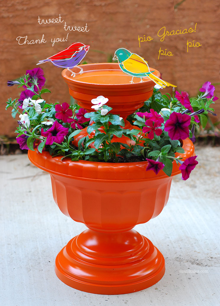 DIY Bird Bath -Birds bathing! -MamiTalks.com
