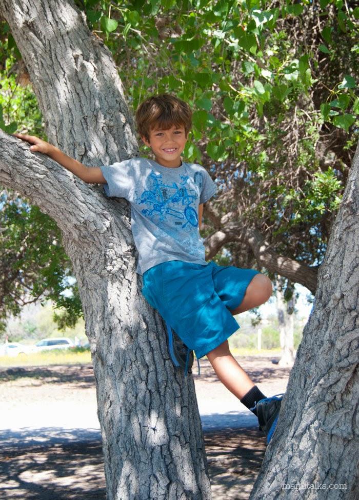 boy-climbing-a-tree-mamitalks