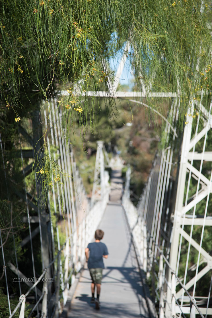 Beautiful suspension bridge in San Diego -MamiTalks.com
