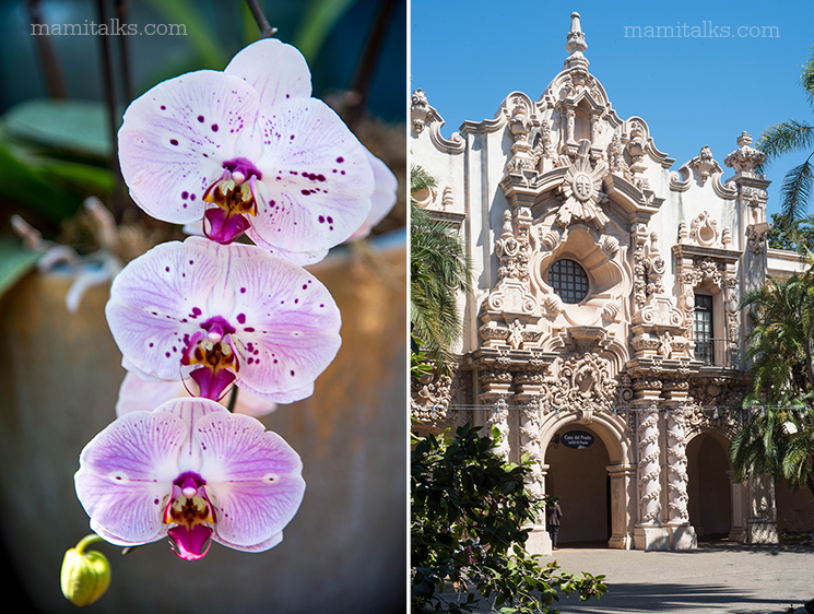 Magic from Balboa Park, details in every corner. -MamItalks.com