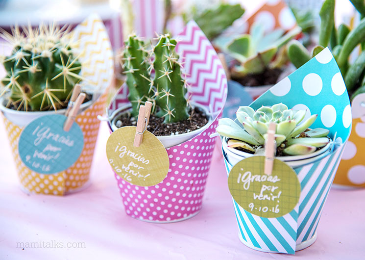 DIY Mini Succulent Favors -MamiTalks.com