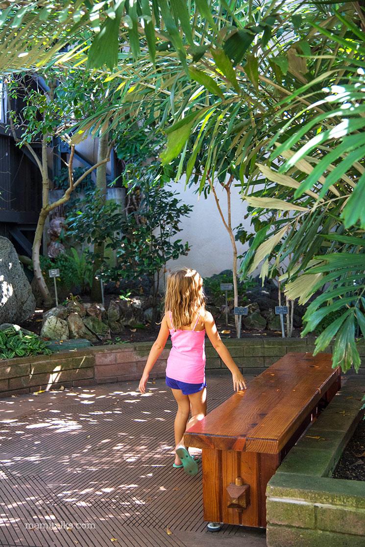 Jardín botánico en Balboa park es siempre gratis -Mamitalks