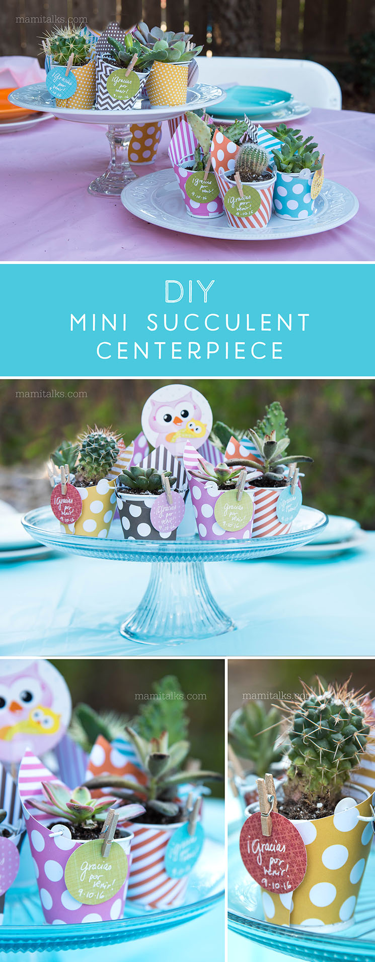 DIY Mini Succulent and Cactus Favors and Centerpiece , make these 2 in 1 beauty for a Baby Shower or party -MamiTalks.com