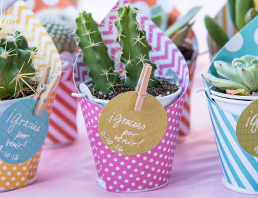 DIY Mini Succulent and Cactus favors -MamiTalks.com