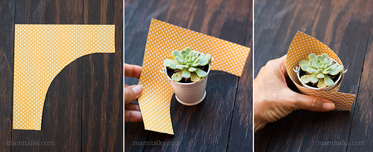 Steps to wrap the mini succulent part favors -MamiTalks.com