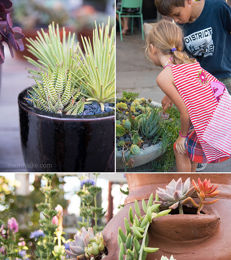 North Park Nursery -MamiTalks.com
