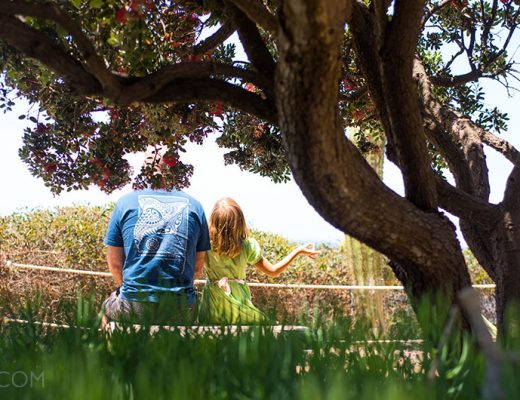 Meditation gardens in Encinitas, san Diego -MamiTalks.com